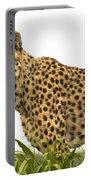 Cheetah Hunting Portable Battery Charger