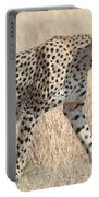 Cheetah Stepping Out Portable Battery Charger