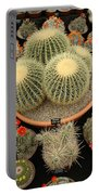 Chelsea Flower Show Cacti Display Portable Battery Charger
