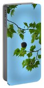 Chestnut Portable Battery Charger