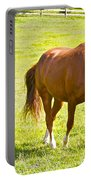 Chestnut Grazing Portable Battery Charger