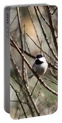Chickadee Sunshine Portable Battery Charger