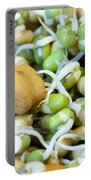 Chickpea And Other Lentils In The Form Of Healthy Eatable Sprouts Portable Battery Charger