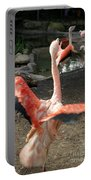 Chilean Flamingo Portable Battery Charger