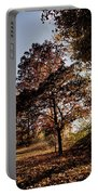 Chinbrook Meadows Portable Battery Charger