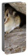 Chipmunk In Danger Portable Battery Charger