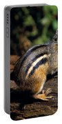 Chipmunk On A Log Portable Battery Charger