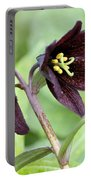 Chocolate Lilly Portable Battery Charger