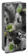 Cholla Blossoms Portable Battery Charger