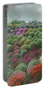 Chrysanthemum Garden - Ott's Greenhouse Schwenksville Pa Portable Battery Charger