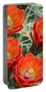 Claret-cup Cactus 2am-28736 Portable Battery Charger