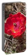 Claret Cup Cactus Portable Battery Charger