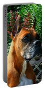 Classic Boxer Portable Battery Charger