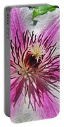 Clematis II Portable Battery Charger