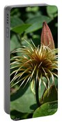 Clematis Mop Portable Battery Charger