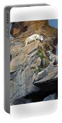 Cliffhanger Portable Battery Charger