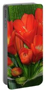 Clivia Portable Battery Charger