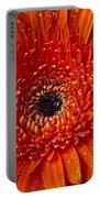 Close Up Orange Mum Portable Battery Charger