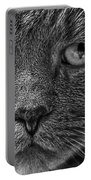 Close Up Portrait Of A Cat Portable Battery Charger
