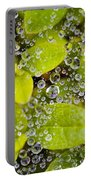 Closeup Of Morning Dew On Leaves Portable Battery Charger