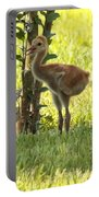 Closeup Of Sandhill Baby Portable Battery Charger by Carol Groenen