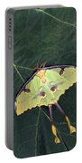Closeup Of Unique Butterfly Portable Battery Charger