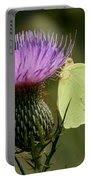 Cloudless Sulfur Butterfly On Bull Thistle Wildflower Portable Battery Charger