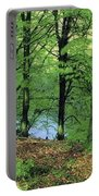 Co Kerry, Standing Stone On Clogher Portable Battery Charger