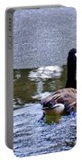 Cold Swim In The Pond Portable Battery Charger