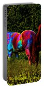 Color Blind Portable Battery Charger