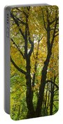 Color Me Yellow Portable Battery Charger
