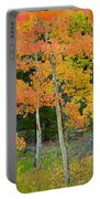 Colorado Aspens Bejeweled Portable Battery Charger
