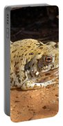 Colorado River Toad Portable Battery Charger