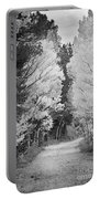 Colorado Rocky Mountain Aspen Road Portrait Bw Portable Battery Charger