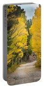 Colorado Rocky Mountain Aspen Road Portrait  Portable Battery Charger