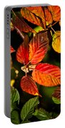 Colorful Blackberry Leaves 1 Portable Battery Charger