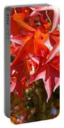 Colorful Fall Tree Red Leaves Art Prints Portable Battery Charger