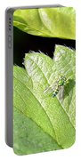 Colorful Garden Fly 2 Portable Battery Charger