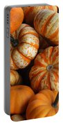 Colorful Gourds Portable Battery Charger