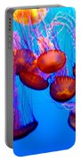 Colorful Jellies Portable Battery Charger