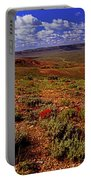 Colorful Valley From Fossil Lake Trailsil Bu Portable Battery Charger