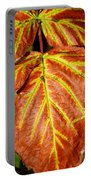 Colors And Veins Portable Battery Charger