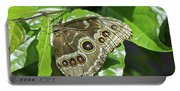 Common Blue Morpho 2917 Portable Battery Charger