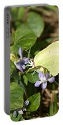 Common Brimstone Portable Battery Charger
