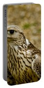 Common Female Kestrel Portable Battery Charger