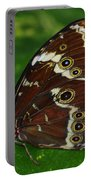 Common Morpho Portable Battery Charger