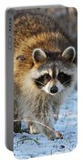Common Raccoon Portable Battery Charger
