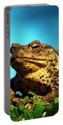 Common Toad Portable Battery Charger