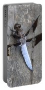 Common White Tail Dragonfly Portable Battery Charger