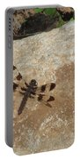 Common Whitetail Dragonfly Portable Battery Charger
